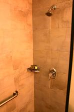 Best Western Premier Petion-Ville Room Shower 2