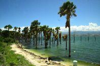 Haiti Road Scene Lake