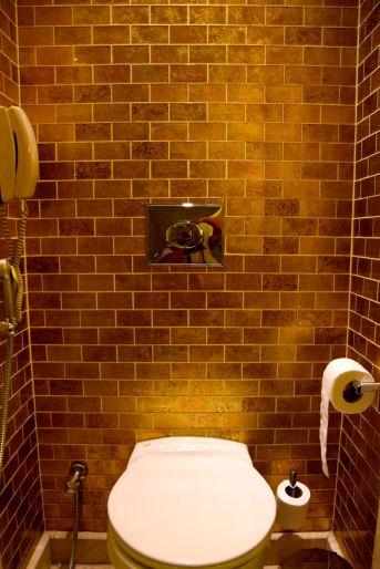 Grand Hyatt Amman Room Toilet