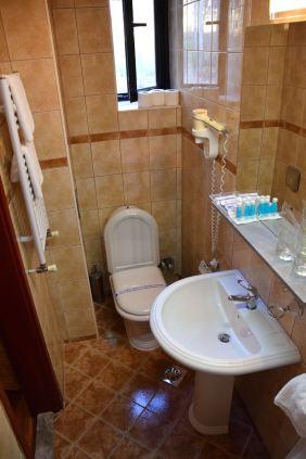 Hotel Inex Gorica Room Sink