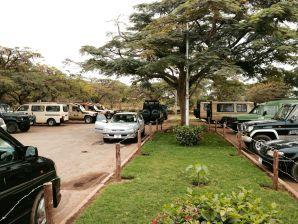 Safari trucks ready to go
