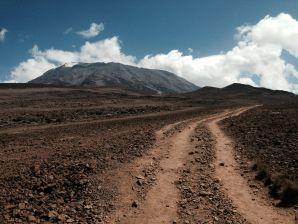 Kilimanjaro Horombo Hut Hike Path