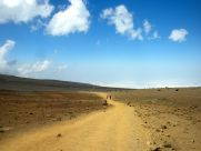 Kilimanjaro Horombo Hut Hike Rocky