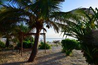 Next Paradise Zanzibar Beach