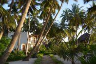 Next Paradise Zanzibar