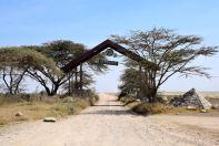 Serengeti Entrance of Park