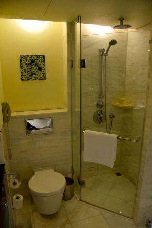 Hyatt Regency Kiev Room Shower