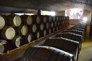 Cellar at Delaire Graff Estate
