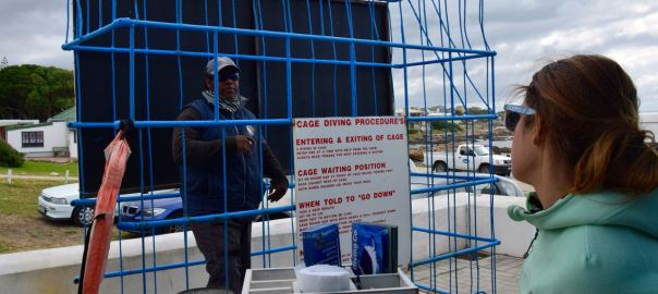 Shark Cage Diving Cage
