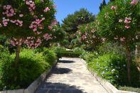 Corinthia Palace Hotel & Spa Room Garden