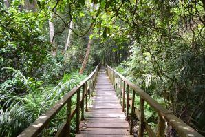 Nigeria Lekki Reserve