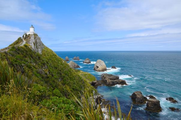 New Zealand Nugget Point