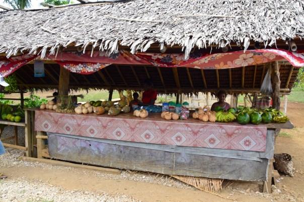 vanuatu-santo-tour-shop