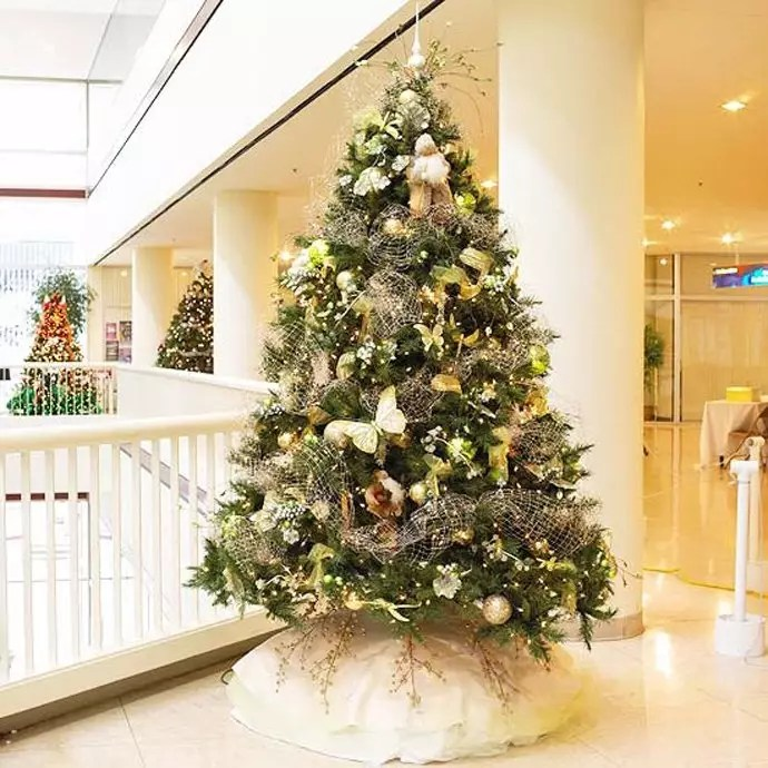 pictures of beautiful decorated christmas trees - Rainforest - beautiful decorated christmas trees