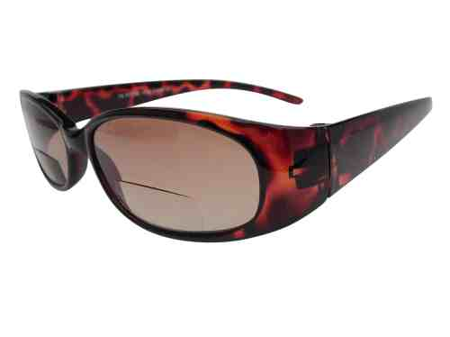 Reina Bifocal Sunglasses in Tortoiseshell