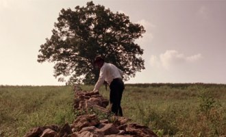 shawshank-oak-tree