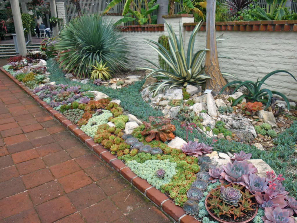 Kleingartengestaltung Bilder How To Plant An Outdoor Succulent Garden World Of Succulents