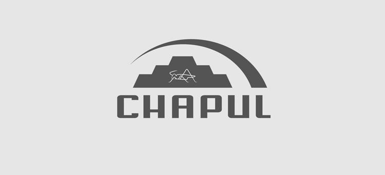 Logo_Chapul_FINAL