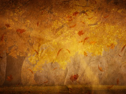 Fall Powerpoint Backgrounds Free Autumn Leaves Backgrounds Forfree