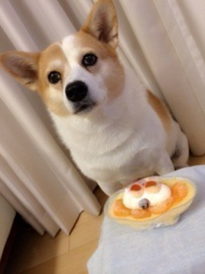 出典:乃木坂46研究生ブログ
