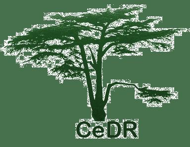 cedartree-transparent