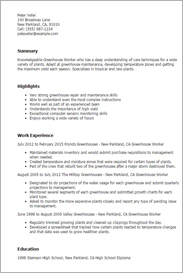 sample resume for experienced production support professional
