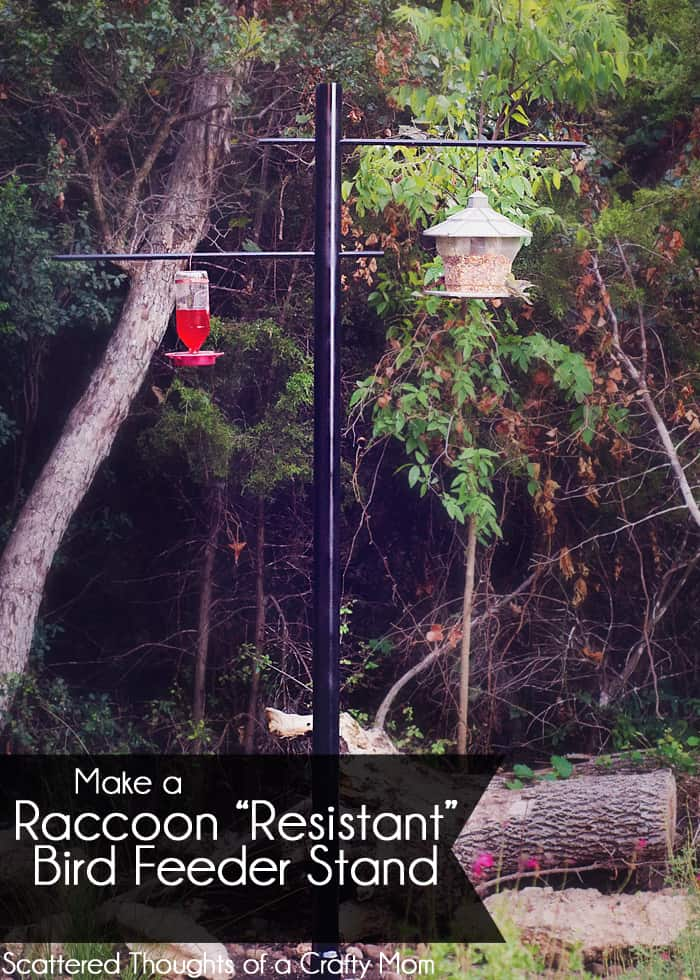 How to make a raccoon resistant bird feeder stand for How to build a bird stand
