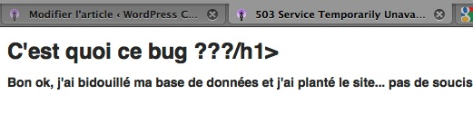 Capture d'écran - db-error.php