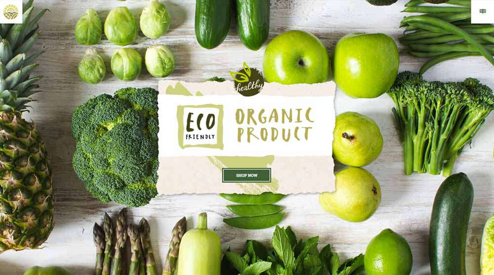 20 Best Organic Food and Restaurant WordPress Themes - WPKlik