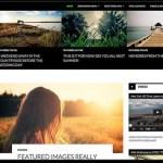 WordPress 3.8 Default Theme TwentyFourteen