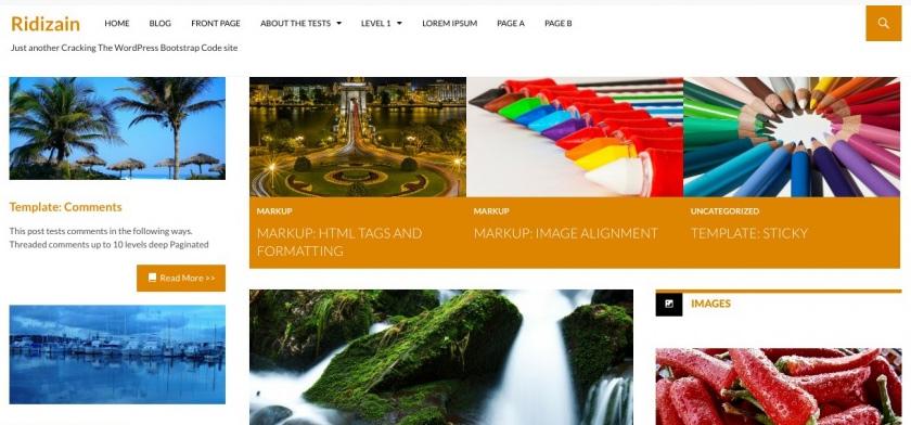 Ridizain: A Free WordPress Magazine Theme Inspired By Twenty Fourteen