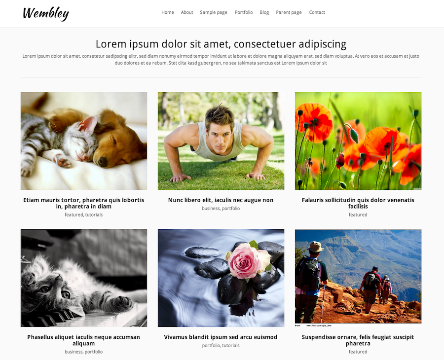 Wembley wordpress Theme
