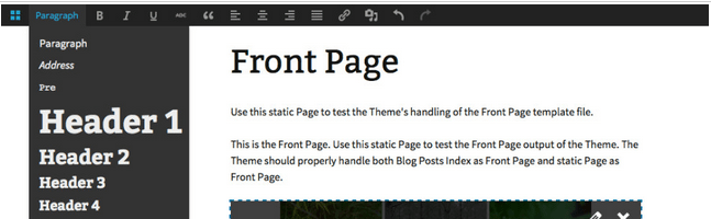Front End Editor Featured Image
