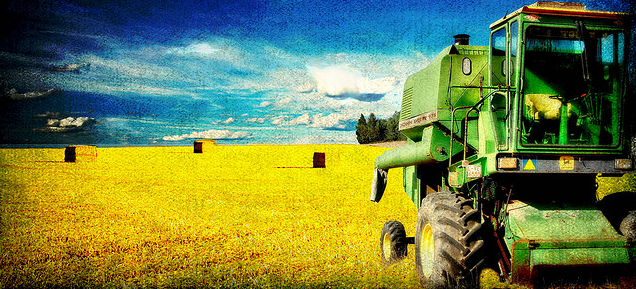 Harvesting Emails Featured Image