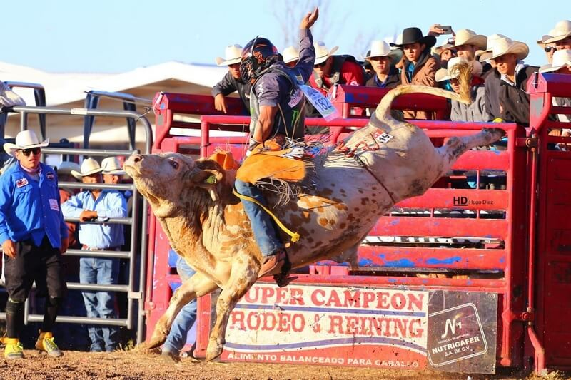 Hedeman Taps Celebrated Mexican Talent To Compete In El