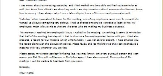 Apology Letter for Coming Late to a Meeting writeletter2