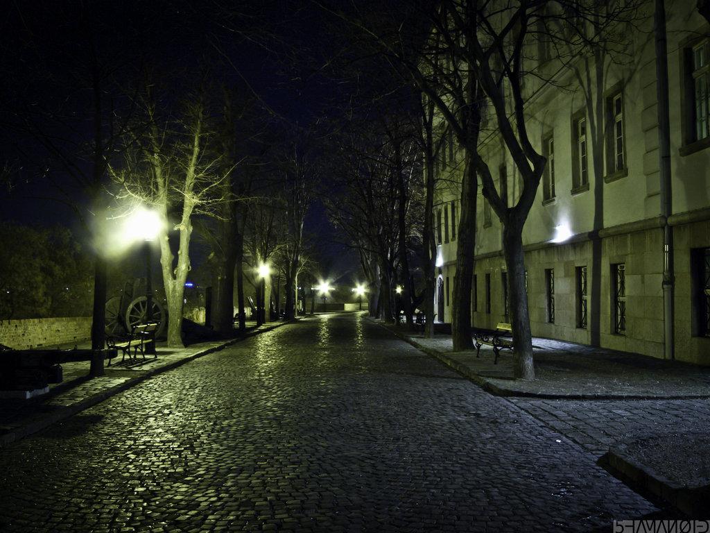 Empty Street By 5haman0id D4ltoex