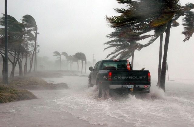 Here's How We Fared in the Hurricane Last Week!