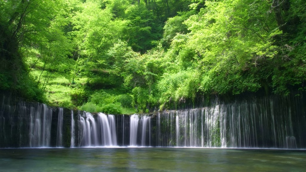 Windows 10 Wallpaper For Girls Hd Forest Wallpapers Wide Screen Wallpaper 1080p 2k 4k
