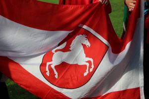 Soll auch im rheinischen Hennef hoch springen - Das westfälische Pferd.