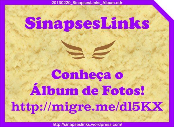 20130220_SinapsesLinks_Album
