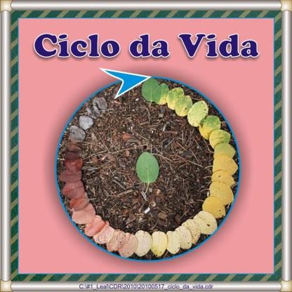 20100517_ciclo_da_vida