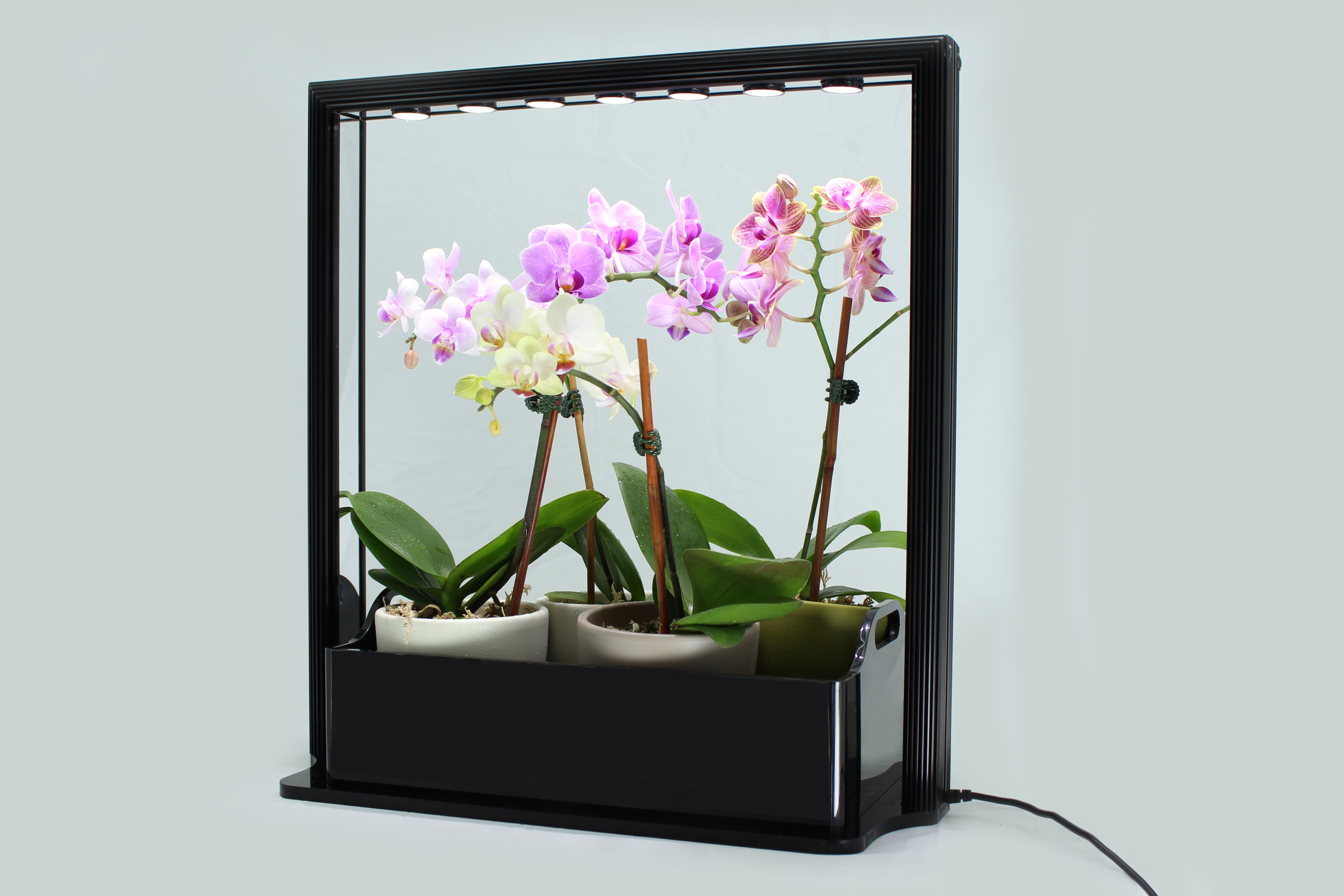 Grow Lights For Indoor Plants New Led Mini Garden From Inhomegardening Is A Great