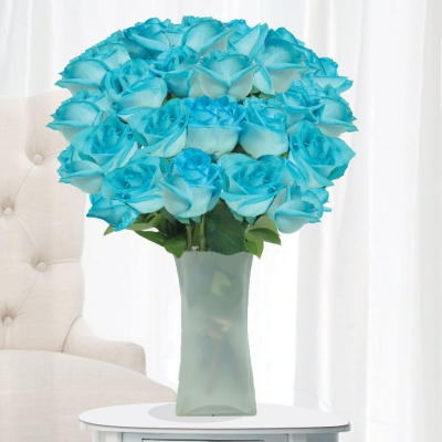 Boys Like Girls Wallpaper Fiesta Roses Are The Ideal Gift For A Serendipitous Thank