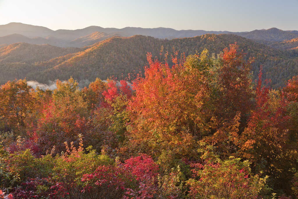Gatlinburg In The Fall Wallpaper Stony Brook Cabins Amp Chalets Reveals Three Things To Know