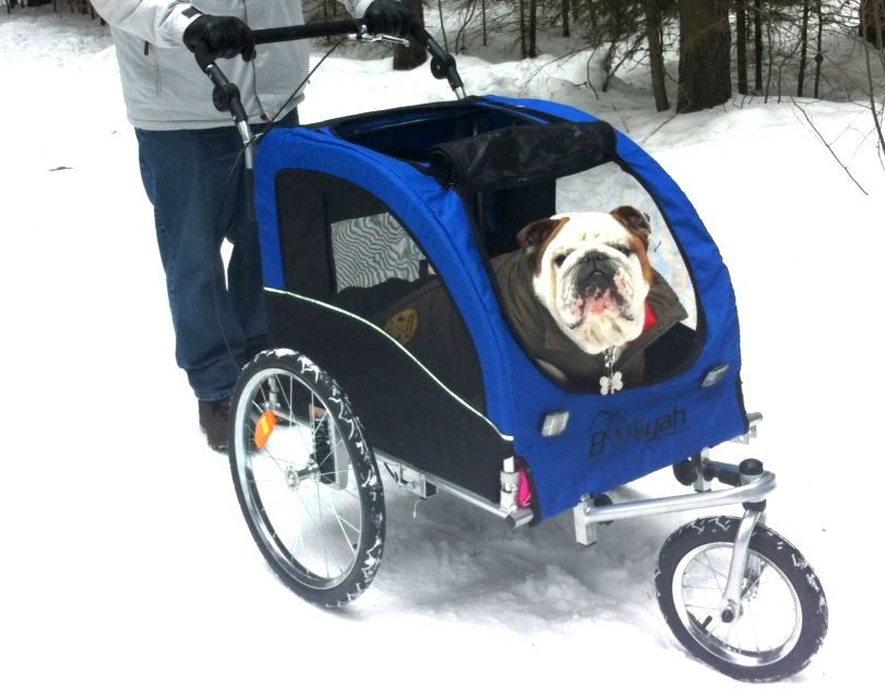 Pet Stroller Large Booyah Strollers Has A 2 In 1 Dog Stroller Designed For