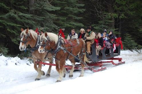 Free Wallpaper Fall Season Tenaya Lodge At Yosemite Ready For A Fun Amp Festive Holiday