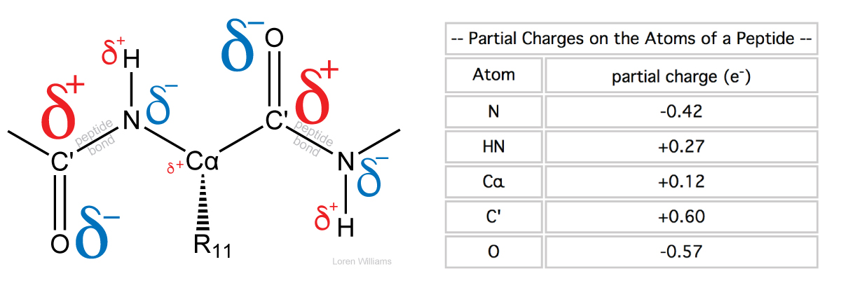Molecular Interactions (Noncovalent Interactions)