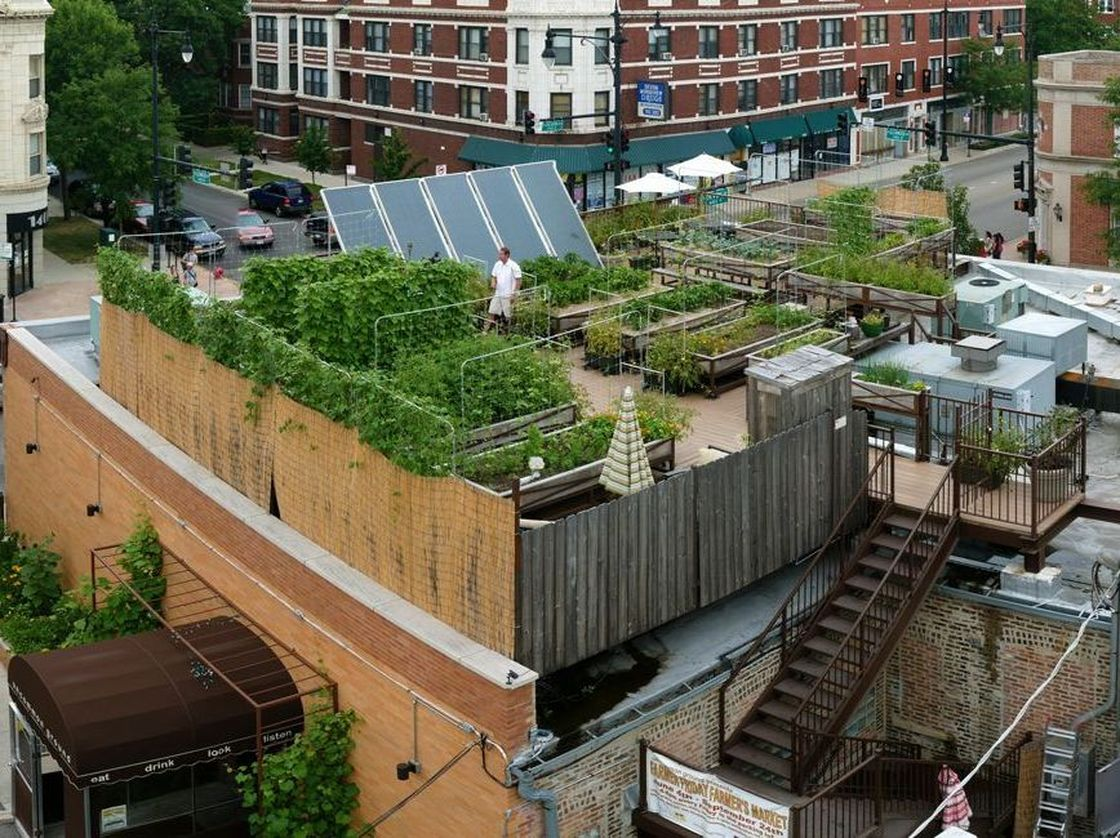 Restaurant Farmhouse Chicago Rooftop Farming Is Getting Off The Ground Bay Area Bites