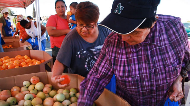 Residents of the San Joaquin Valley town of Pixley pick out fresh fruits and vegetables during a food distribution by FoodLink of Tulare. (Scott Anger/KQED)